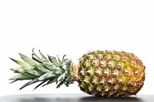 白背景のパイナップルの写真素材 [FYI04149603]