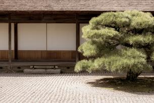 【香川県 高松市】 栗林公園の掬月亭 和風イメージの写真素材 [FYI04149876]