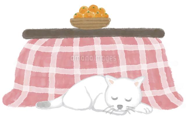 コタツで眠るネコのイラスト素材 [FYI04150090]