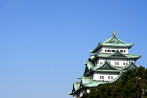晴天の名古屋城天守閣の写真素材 [FYI04151576]