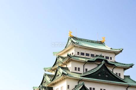 晴天の名古屋城天守閣の写真素材 [FYI04151577]