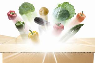 段ボールから飛び出す野菜の写真素材 [FYI04153907]