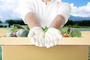 野菜をお届けする配達員の写真素材 [FYI04153909]