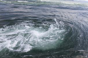 うず潮の写真素材 [FYI04156171]