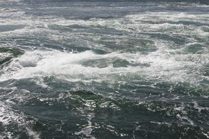 うず潮の写真素材 [FYI04156181]