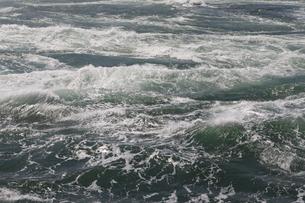 うず潮の写真素材 [FYI04156185]