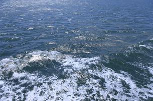 海面の写真素材 [FYI04156206]