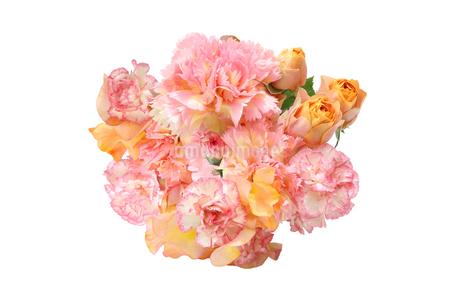 薔薇とカーネーションの花束の写真素材 [FYI04157072]