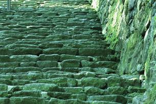 階段の写真素材 [FYI04157373]