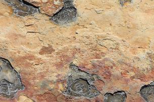 千畳敷の岩の写真素材 [FYI04157659]