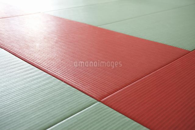 道場の畳の写真素材 [FYI04157894]
