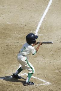 少年野球バッターの写真素材 [FYI04158646]