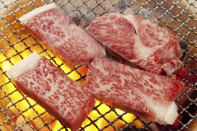 炭火焼き肉の写真素材 [FYI04158709]