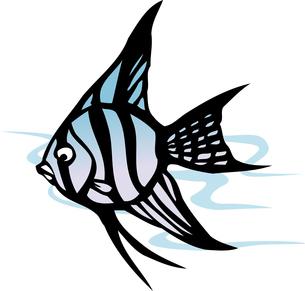 熱帯魚のイラスト素材 [FYI04159484]
