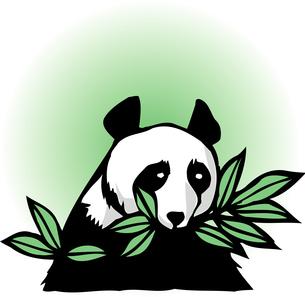 パンダのイラスト素材 [FYI04159672]