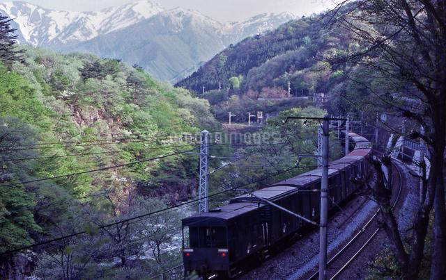 上越線 渓谷を行く貨物列車の写真素材 [FYI04160759]