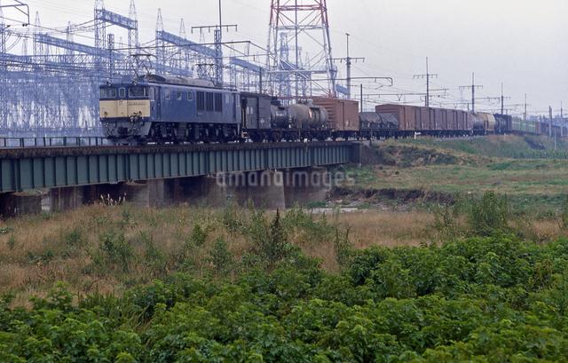 上越線 EF64電気機関車牽引貨物列車の写真素材 [FYI04160762]