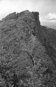 韓国岳山頂の写真素材 [FYI04160836]