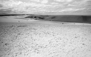 鳥取砂丘の写真素材 [FYI04160889]