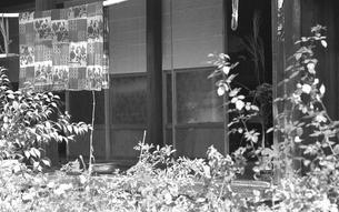 朝の丹波山村の写真素材 [FYI04160959]
