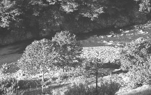 晩秋の丹波山村の写真素材 [FYI04161029]