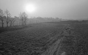 開業した武蔵野線沿線の町 見沼田圃にての写真素材 [FYI04161111]