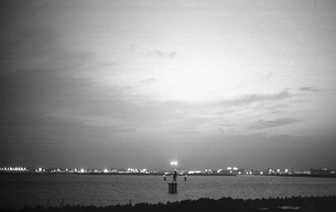 東京湾・大井埠頭の写真素材 [FYI04161339]