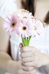 ピンクのガーベラの花束を持った少女の写真素材 [FYI04162342]