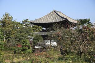 喜光寺の写真素材 [FYI04163022]