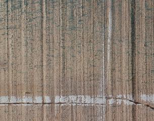 木材の切断面の写真素材 [FYI04163160]