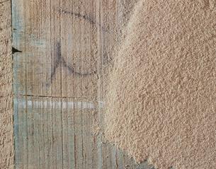 木材の切断面の写真素材 [FYI04163162]