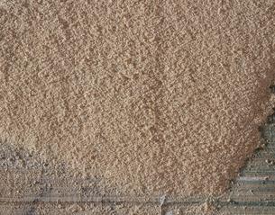 木材の切断面の写真素材 [FYI04163164]