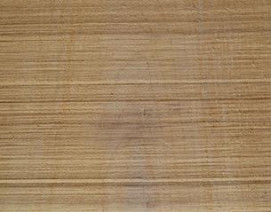 木材の切断面の写真素材 [FYI04163167]