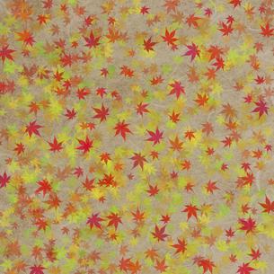 和紙に色彩構成の写真素材 [FYI04166066]