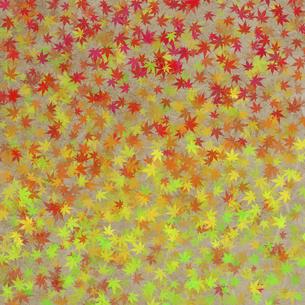 和紙に色彩構成の写真素材 [FYI04166067]