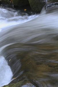 渓流の写真素材 [FYI04166491]