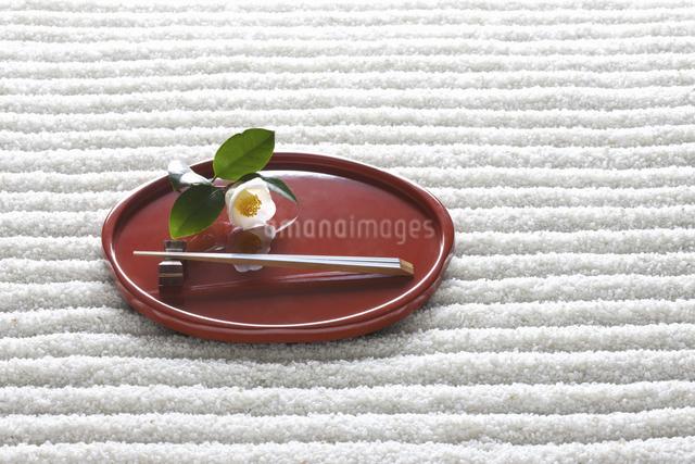 和食器と白ツバキの写真素材 [FYI04166963]