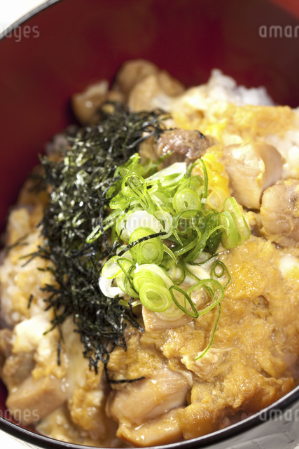 親子丼の写真素材 [FYI04171555]