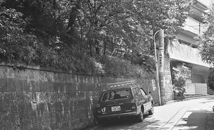 原宿・神宮前5丁目の風景の写真素材 [FYI04172198]