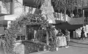 原宿・神宮前4丁目の写真素材 [FYI04172379]