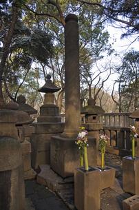 上野公園・天海僧正毛髪塔の写真素材 [FYI04172672]