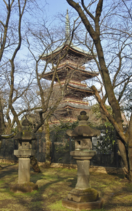上野公園・上野東照宮石灯籠と寛永寺五重塔の写真素材 [FYI04172675]