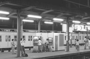 鉄道 国鉄・常磐線 柏駅ホームの写真素材 [FYI04172816]