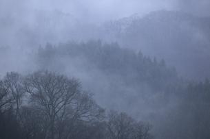 晴れ行く霧の山肌の写真素材 [FYI04173343]