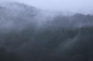 晴れ行く霧の山肌の写真素材 [FYI04173344]