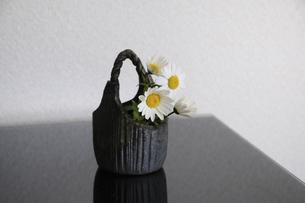 焼き物の器に入れた花ノースポールの写真素材 [FYI04173501]