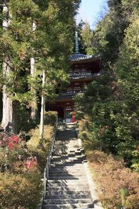 松尾寺の写真素材 [FYI04175816]
