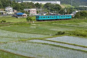 日本の鉄道、和歌山線105系の写真素材 [FYI04176360]