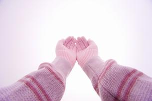 手袋をした手の写真素材 [FYI04177309]