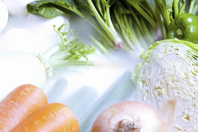野菜の写真素材 [FYI04178801]